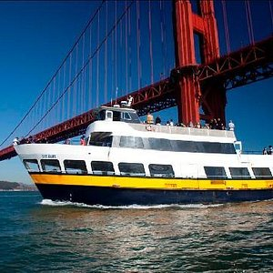 Sail underneath the Golden Gate Bridge on our Bay Cruise Adventure and Escape from the Rock Crui