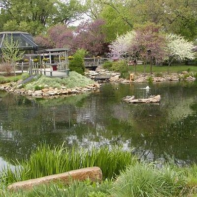 The zoo grounds