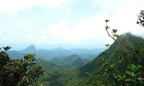 Climbing to Pico de Sao Tome