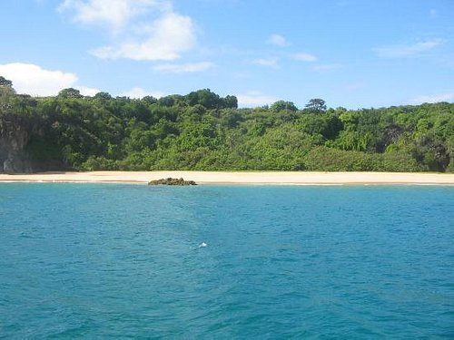 Bode Beach - view from a boat