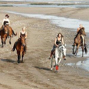 Beachfun for everybody