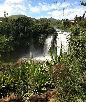 Lily Wasserfall