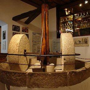 Museum il Museo dell'Olio d'Oliva