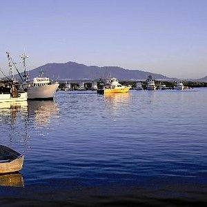 Bermagui Harbour