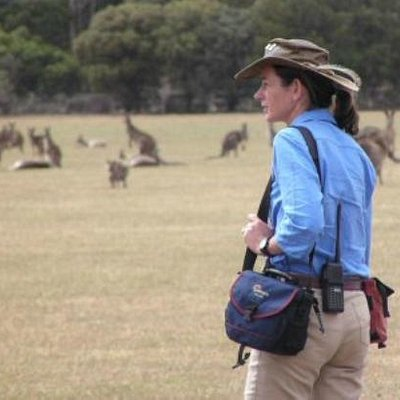 Wildlife Guide Janine with a wild mob of Kangaroos