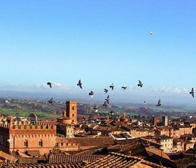 The best of Tuscany: Siena, Florence, San Gimignano
