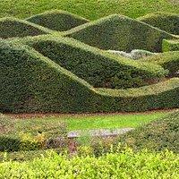 Hedge garden in Thame Barrier Park