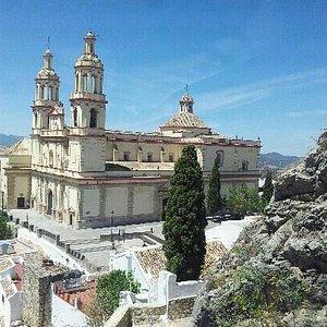 La catedral vista desde la torre