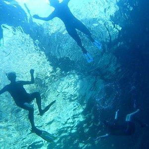 snorkeling nei migliori  siti di Ischia, selezionati dai nostri operatori