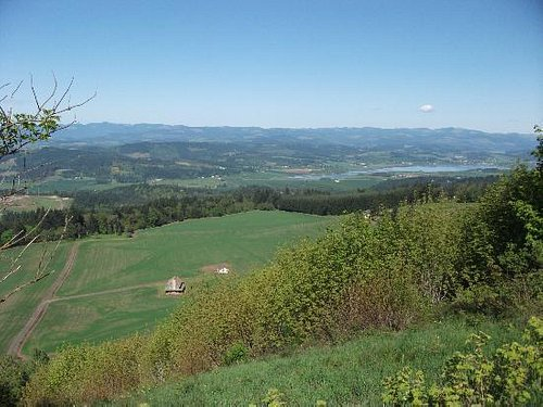looking west near the top of Bald Peak