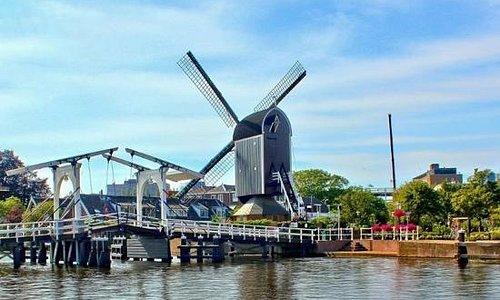 windmill de put