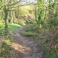 Path through Caldy Hills.