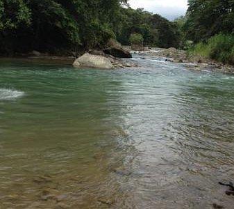Río Pejibaye