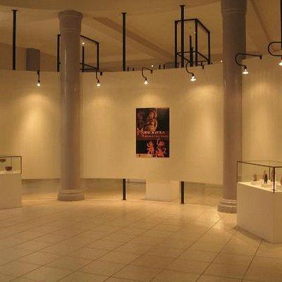 Expo en el Museo!