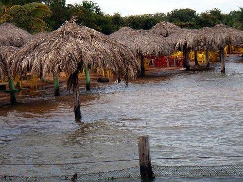 Praia do Prata,1