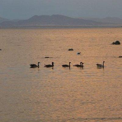 Mono Lake at 7:00 PM