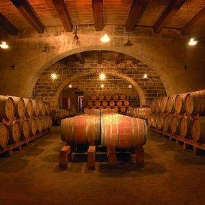 The Marsovin Cellars