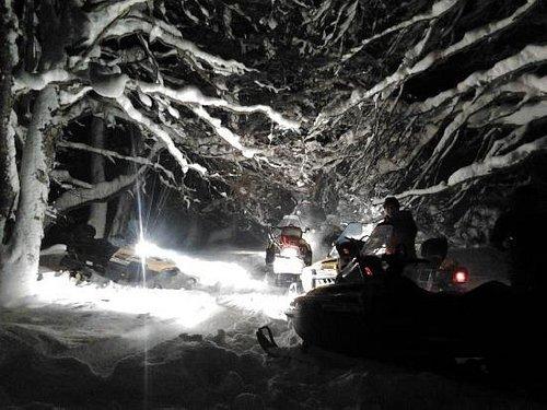 Hermoso! el bosque nevado de noche es increible