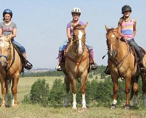 Great Horses Great Scenery
