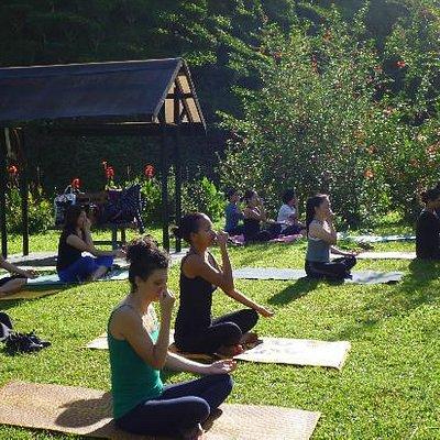 Experience a relaxing Pranayama class at a tea plantation.