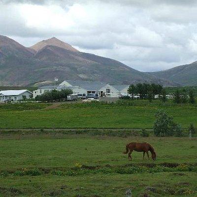 Laxnes Farm