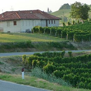 View of the winery