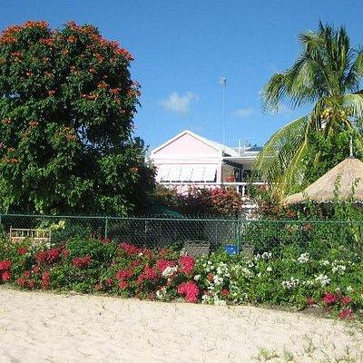 Art G. from Brighton Beach, Barbados
