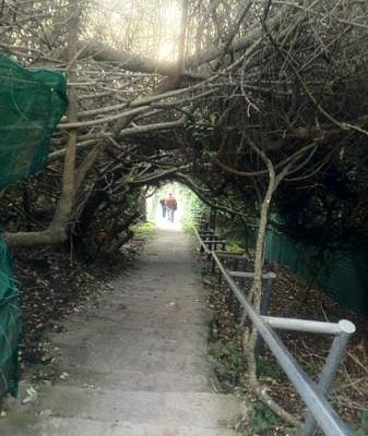 noetzie stairs