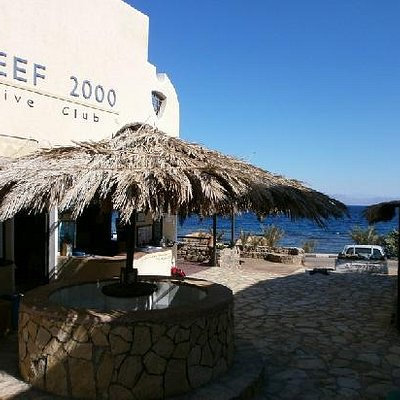 Reef 2000 Dive Club