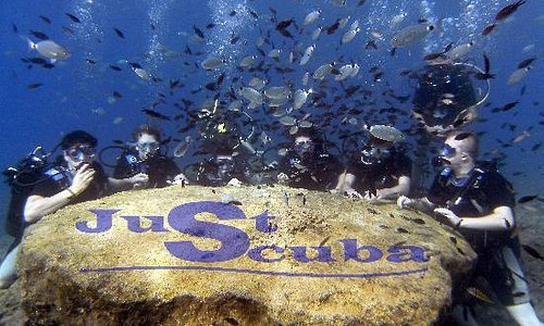 Diving Is Fun with Just Scuba