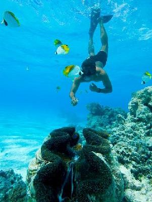 Snorkelling at Honeymoon Island
