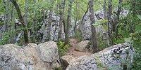 Bois de PaïoliveBois de Païolive
