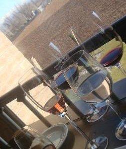 Harmonização dos vinhos