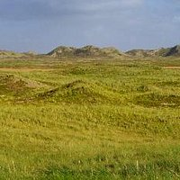 Landscape of Thy national Park
