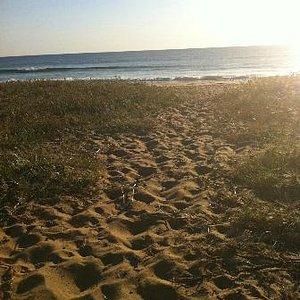 Culburra Beach walking back in Dunes