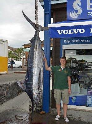 Marlin bleu (132kgs)