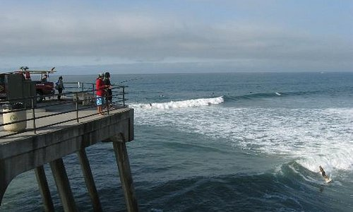 fishing and surfing watching