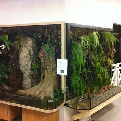 Två tropicarier möter besökaren vid entre'n till Vätternakvariet.