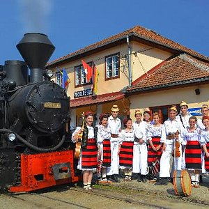"""The locomotive 764.421 """"Elveţia"""" with a traditional group of children"""