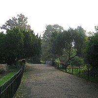 Walkway in Dulwich park