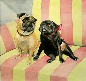 Painting Cats and Dogs- Watercolor portrait