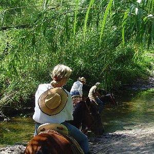 Riding through the campo near San Miguel de Allende