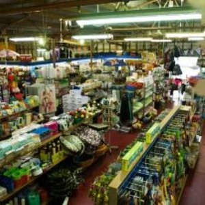 A unique shopping experience, a one stop shop. Albany's amazing hidden treasure!