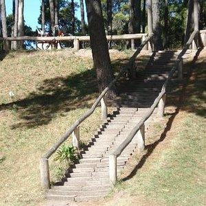 escalera de acceso al museo