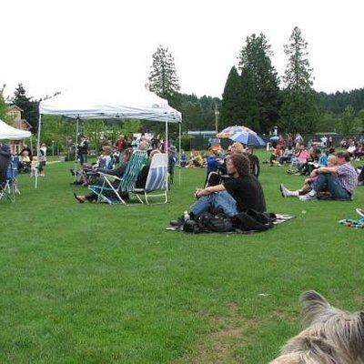 People enjoying the Sunday blues concert