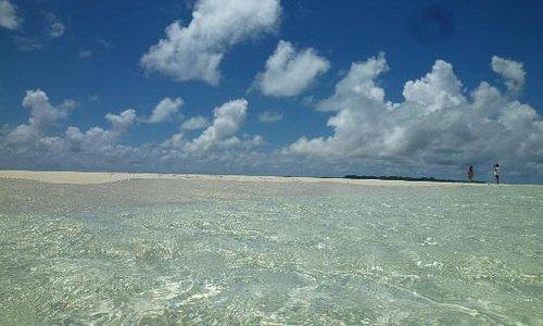 ロングビーチの周りの遠浅な海もきれいです!