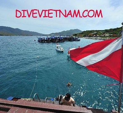 Diving throughout Vietnam