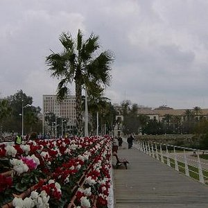 Floral Bridge (Puente de las Flores)
