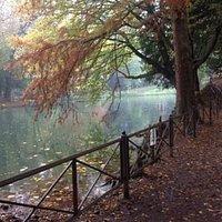 lago del parque de monza