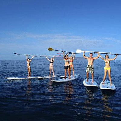 Paddleboard 101 XL/Whale Watch